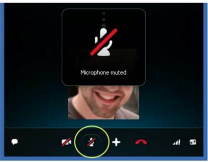 10 Tips to Record phone Call on iPhone - Make sure your iPhone is not muted