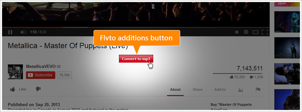IE YouTube Downloaders - FLVTO YouTube Downloader