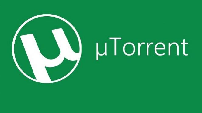Top 5 Torrent Video Downloaders