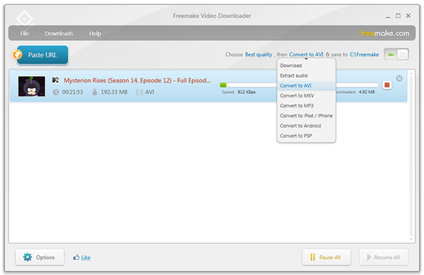 Facebook Video Converters - freemake-video-downloader1
