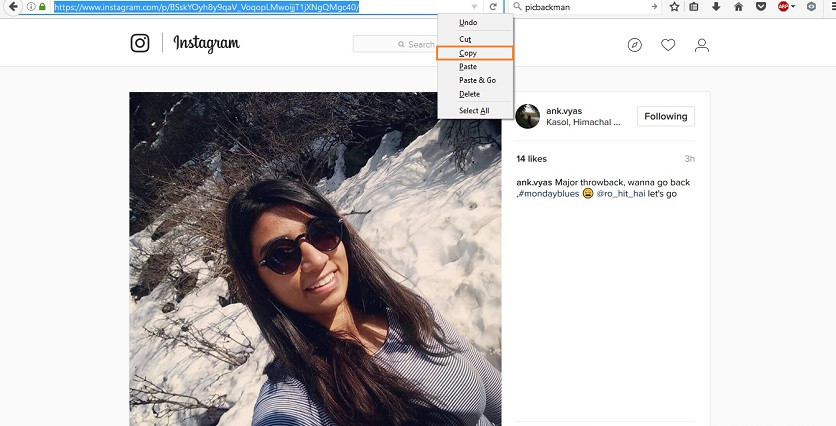 How to Download Instagram Photos - Copy Instagram Photo URL