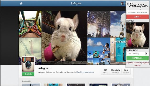Download High-Quality Instagram Photos - Using Image Downloader Plugin