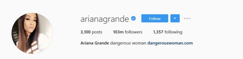 Most Followed Instagram Accounts - arianagrande