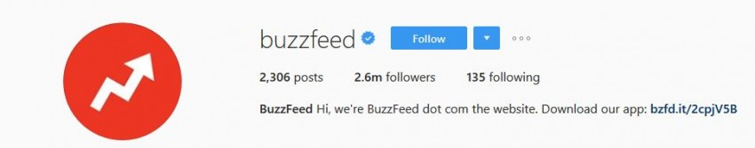 Best Instagram Accounts - Buzzfeed