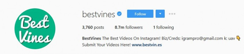 Best Instagram Accounts - bestvines