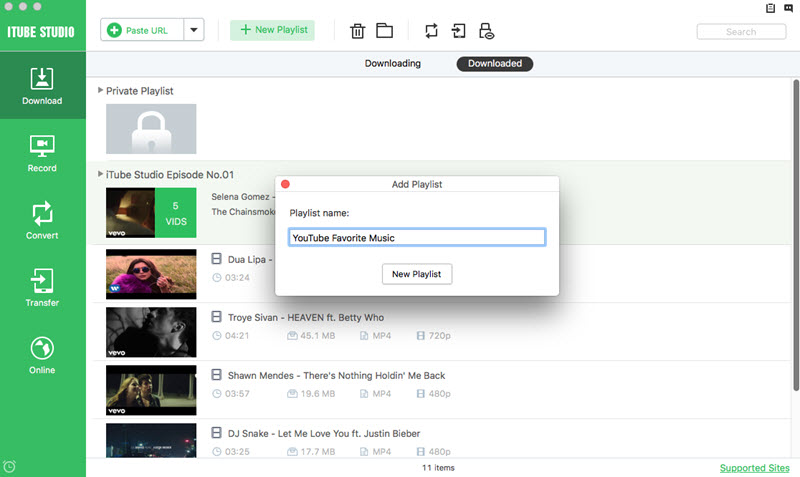download video in playlist mac