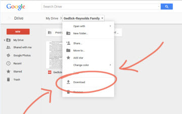 How to Download Music/Video or Multiple Files from Google Drive