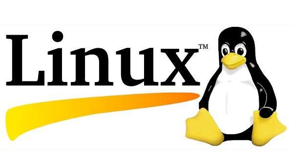 safari on linux